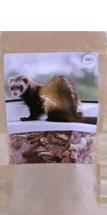 Frettchen-Snack Rinderherzen 50g (1 Stück)